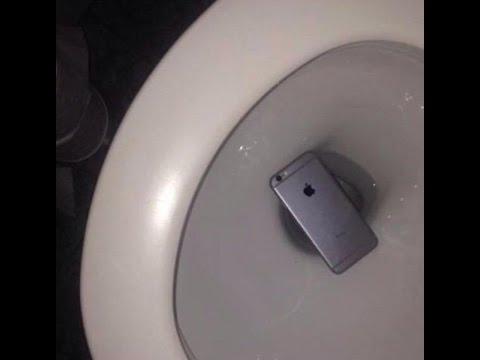 i dropped my iphone in the toilet iprofessionals brookvale same day iphone smartphone 20472